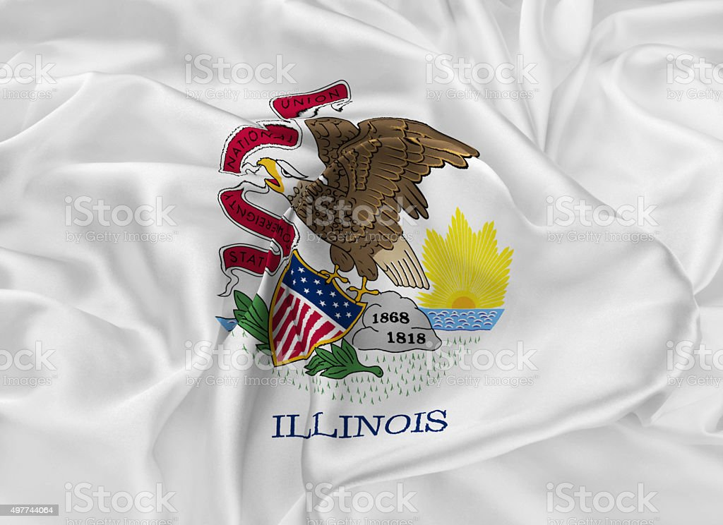 State Flag of Illinois vector art illustration