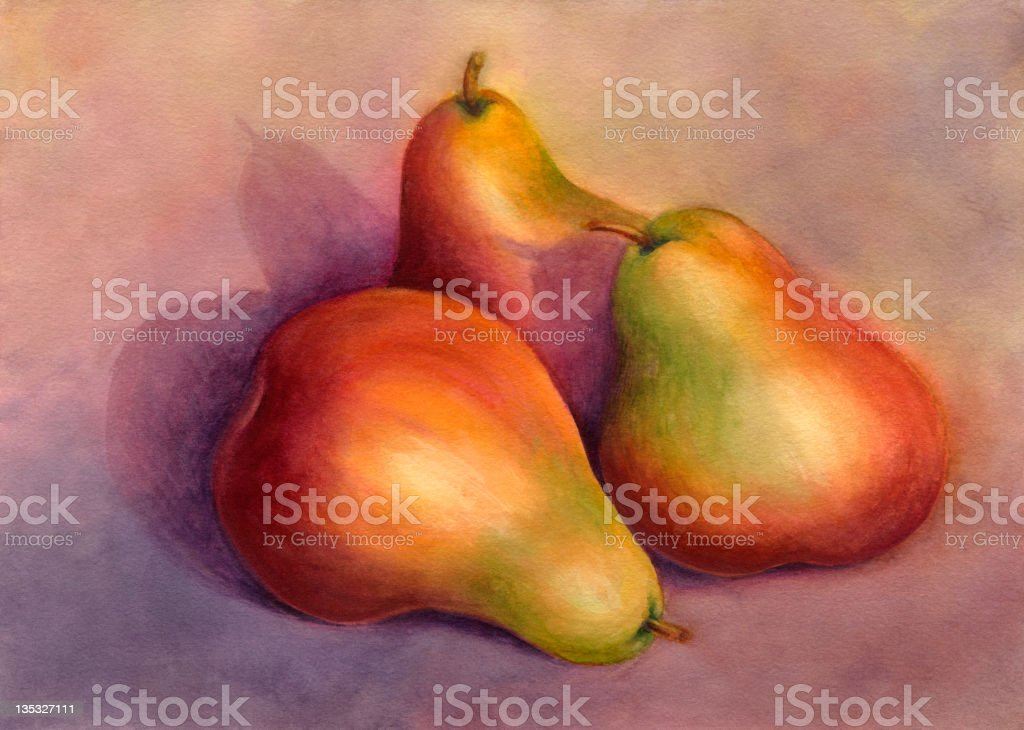 Still life painting of a trio of pears vector art illustration