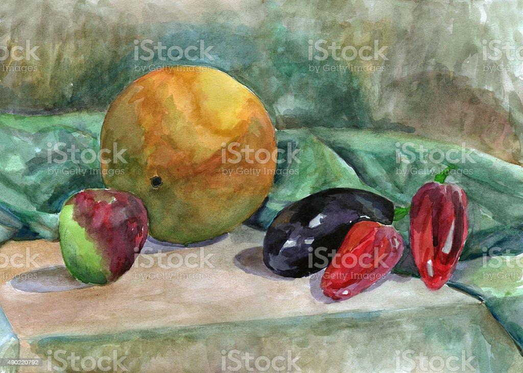 Still Life with melon, watercolor vector art illustration