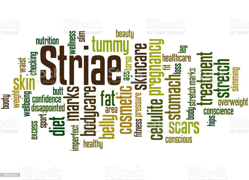 Striae, word cloud concept 5 vector art illustration