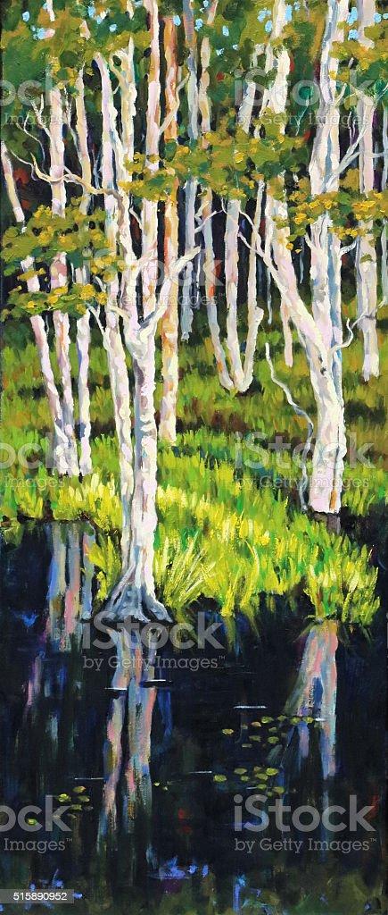 Stringy Bark Acacia Eucalyptus Trees in Wetlands Painting vector art illustration