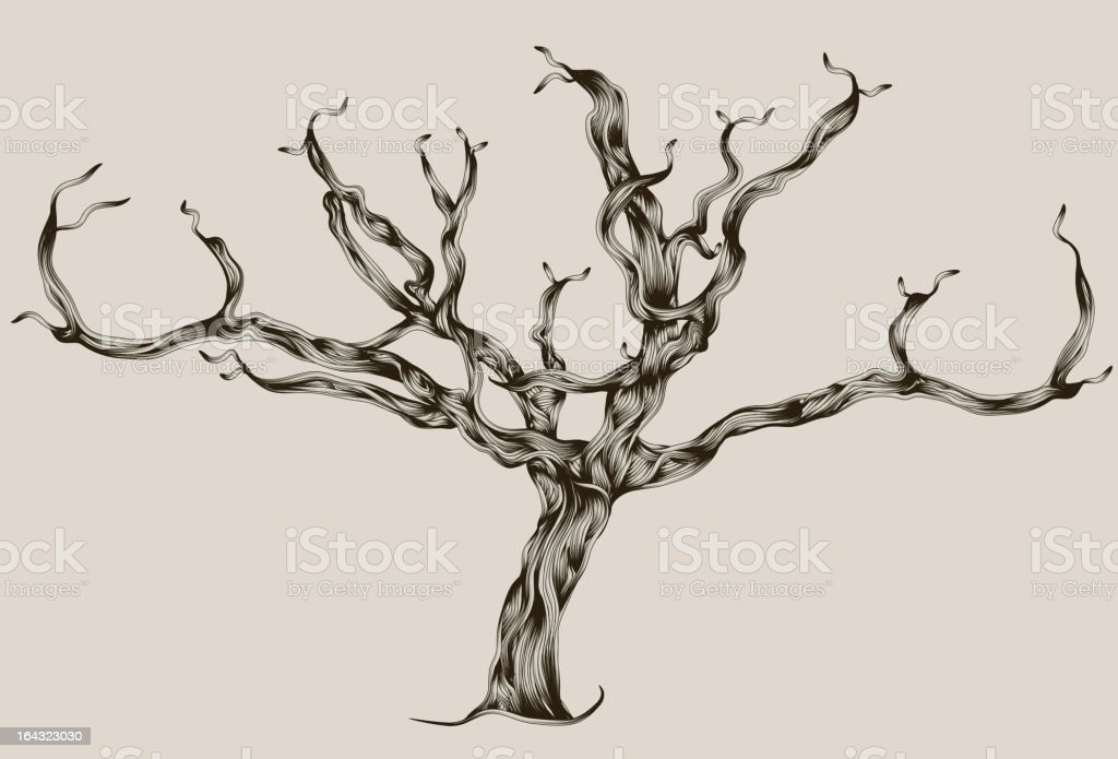 Stylized Illustrated hand drawn dead tree royalty-free stock vector art