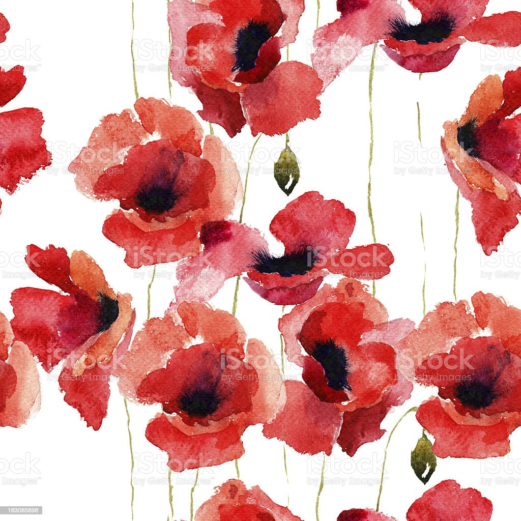 Stylized Poppy flowers illustration vector art illustration