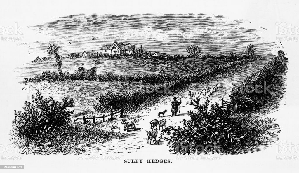 Sulby Hedges in Naseby, England Victorian Engraving, Circa 1840 vector art illustration