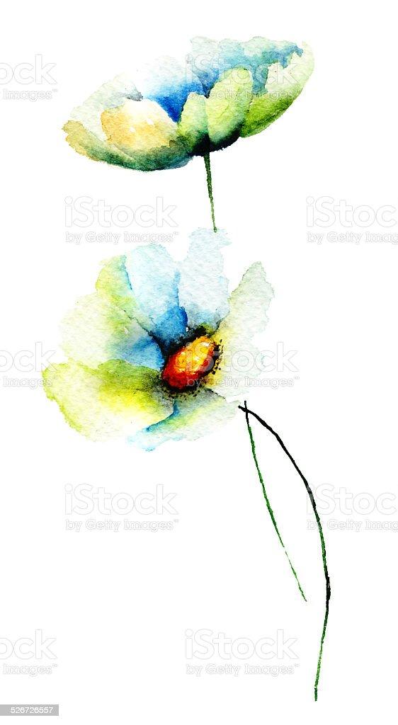 Summer Chamomile flowers vector art illustration