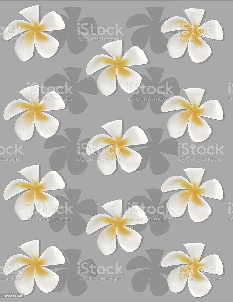 Summer Flower vector art illustration