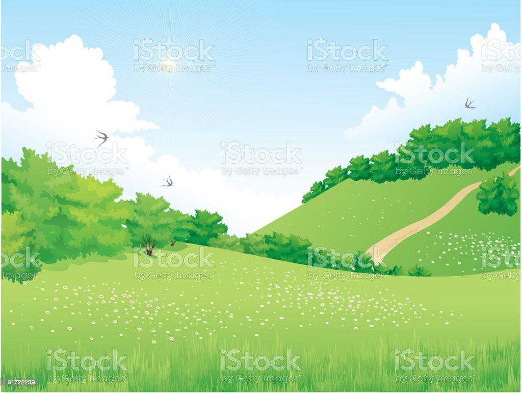 Summer landscape royalty-free stock vector art