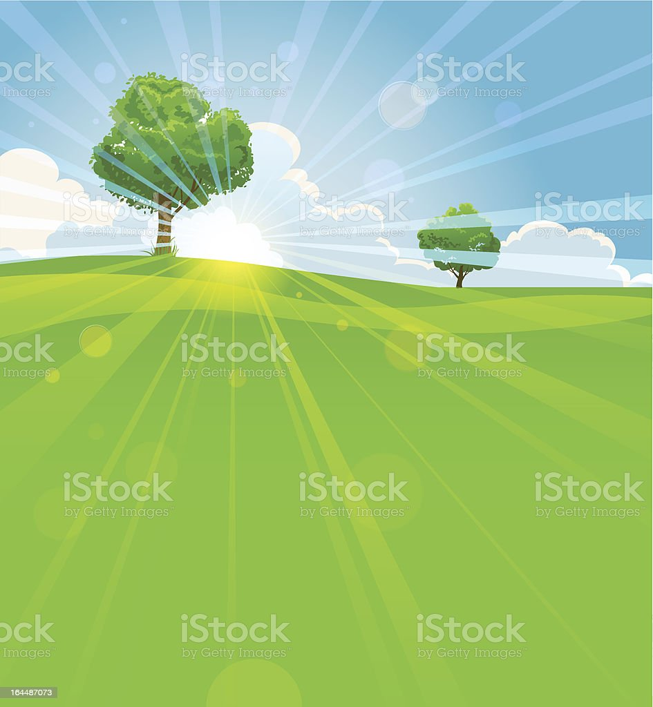 Summer landscape with trees royalty-free stock vector art
