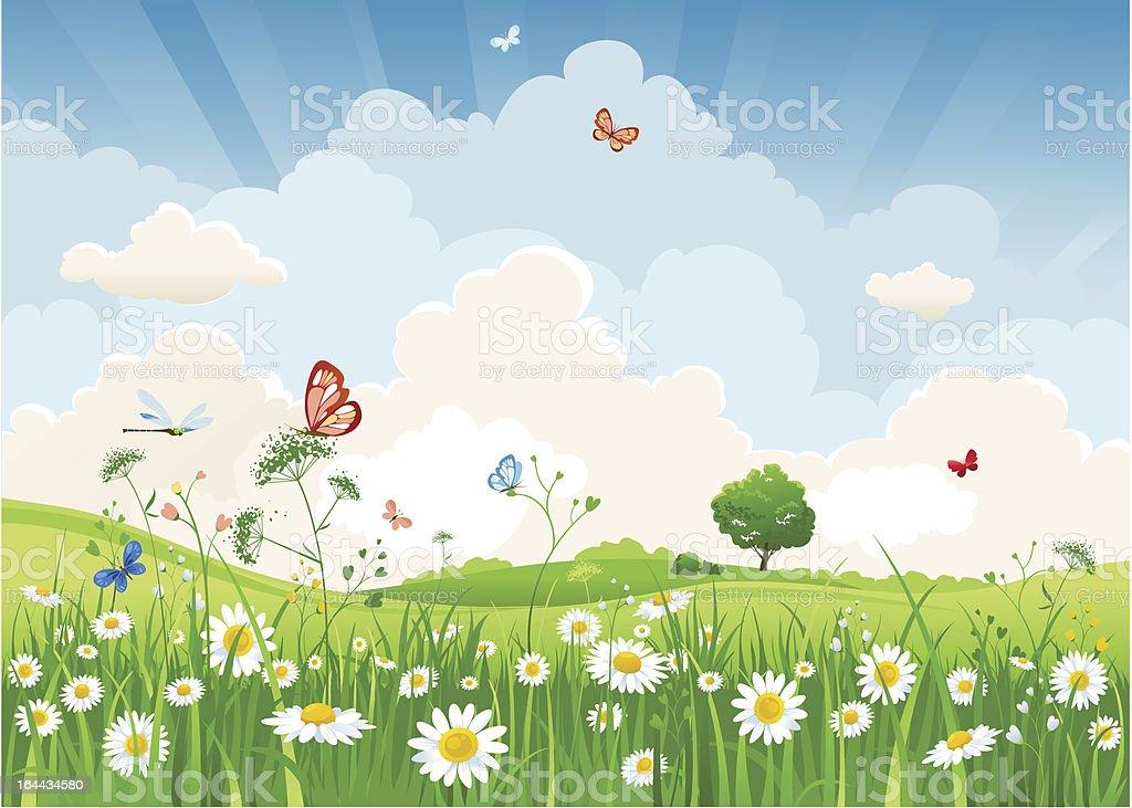 Summer sunny landscape vector art illustration