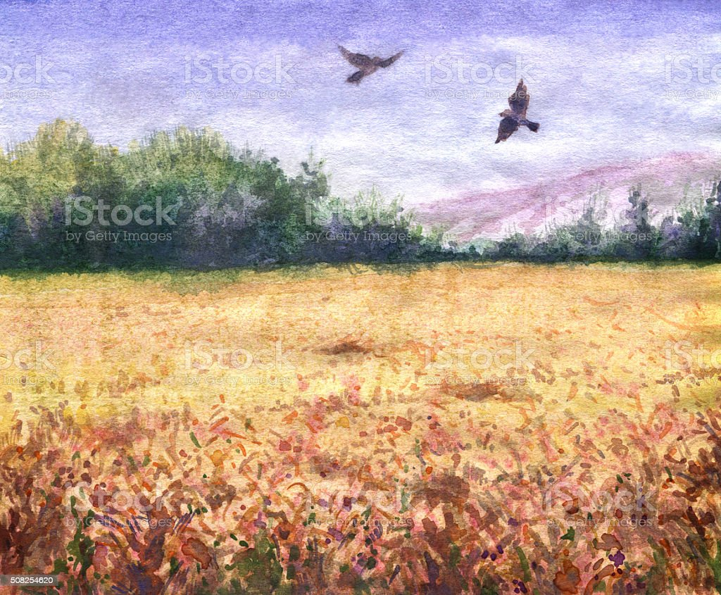 Summer view of the wheat field and flying birds. vector art illustration