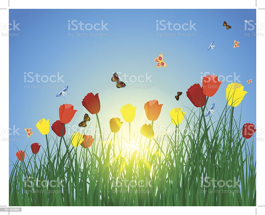 sun meadow royalty-free stock vector art