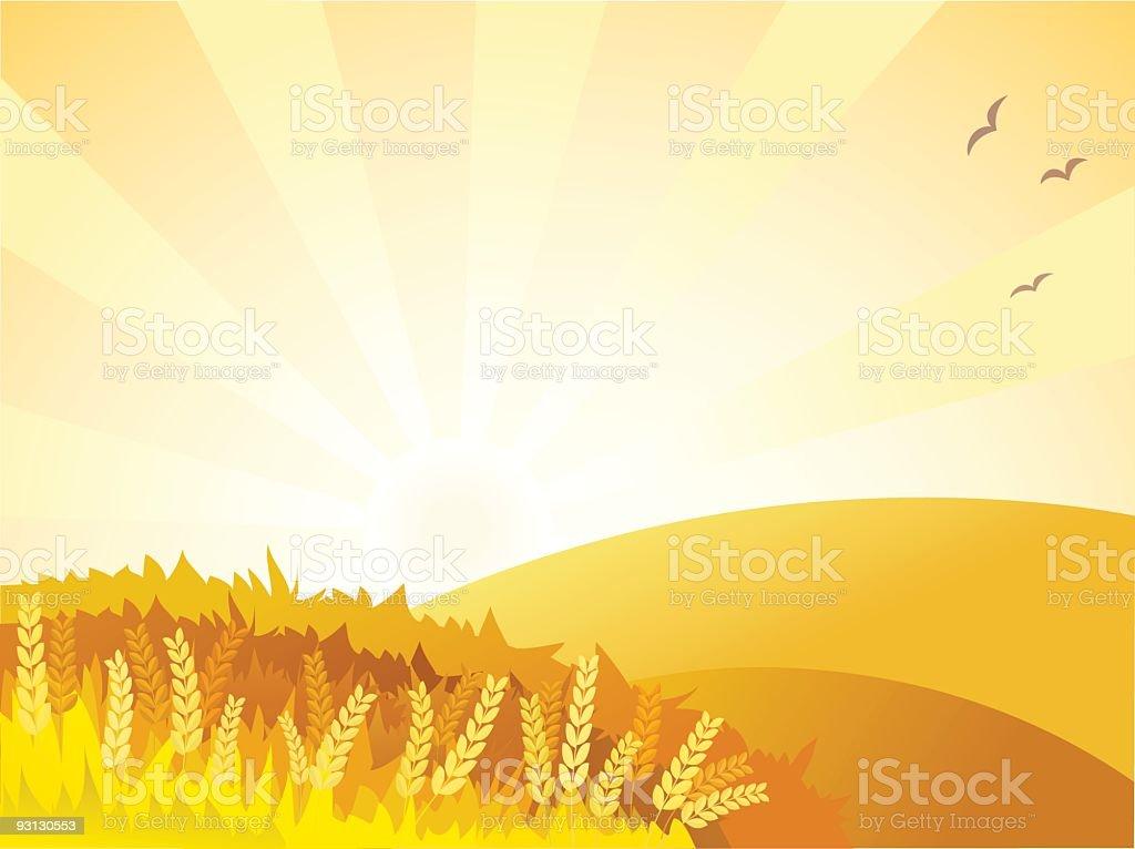 Sunny golden landscape vector art illustration