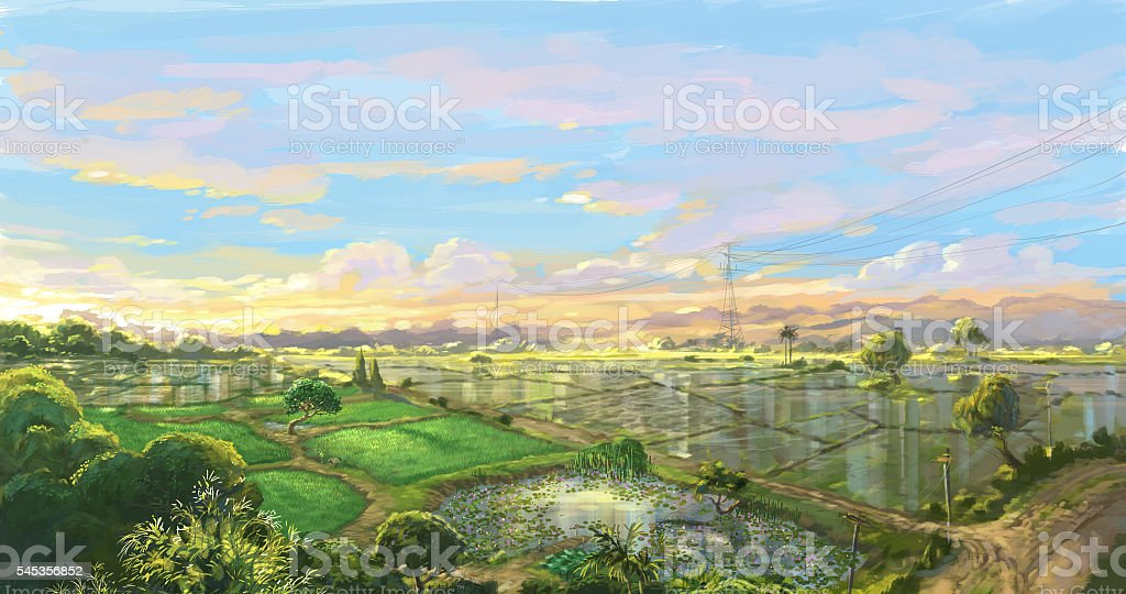 sunset rice field in rainy season digital color sketch vector art illustration