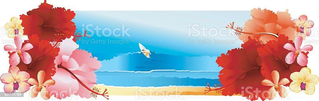 SurferIII vector art illustration