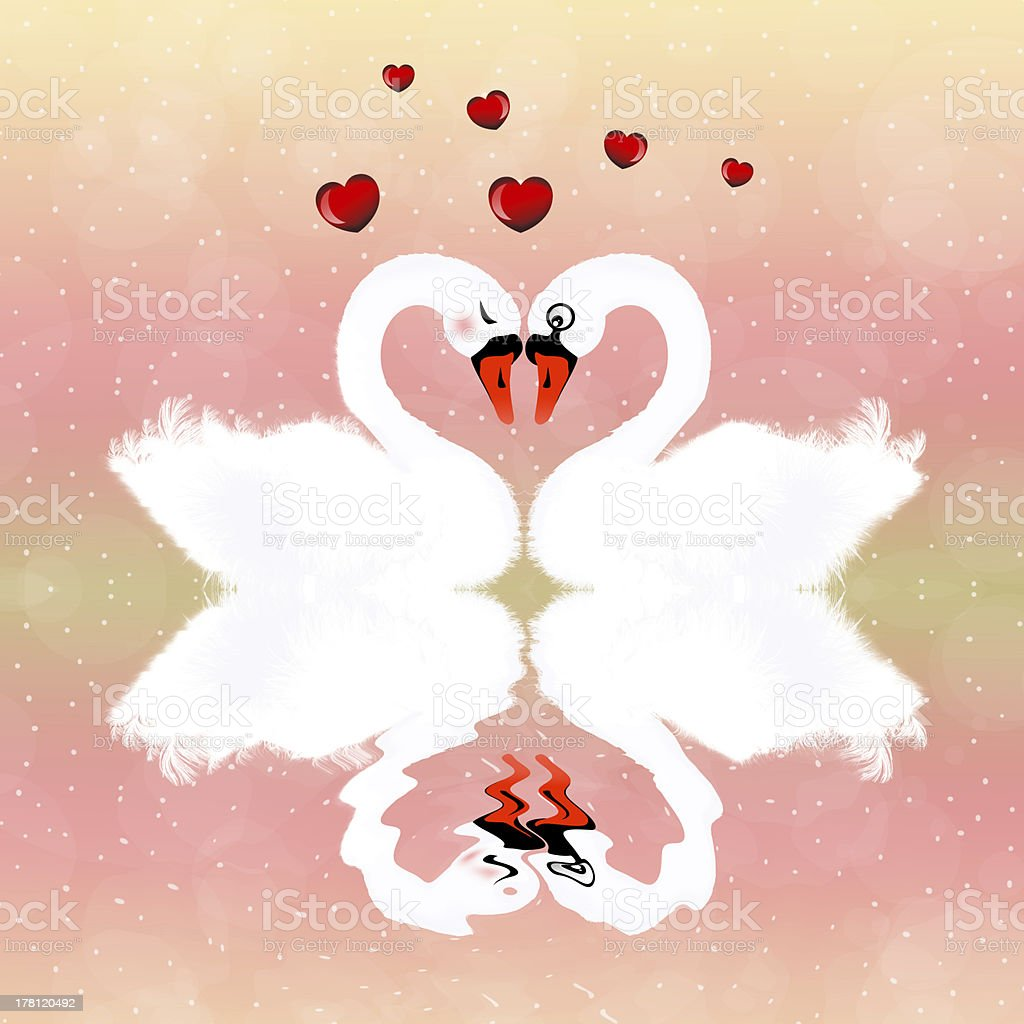 Swans in love royalty-free stock vector art
