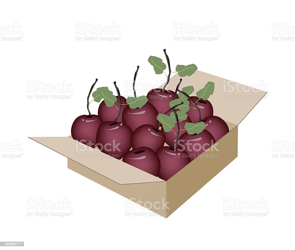 Sweet Fresh Apple in A Shipping Box royalty-free stock vector art