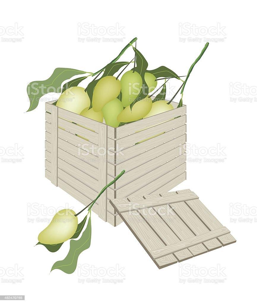 Sweet Mango Fruits in Wooden Cargo Box royalty-free stock vector art