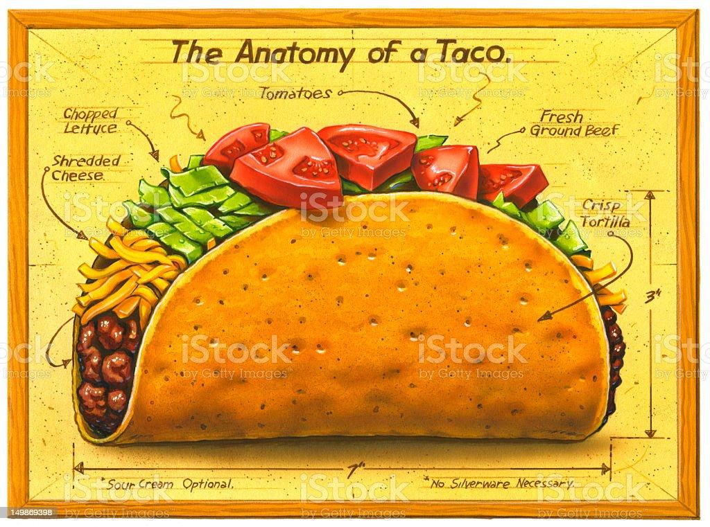 Taco - How to Make vector art illustration