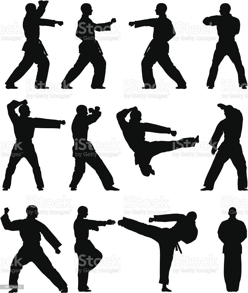 Taekwondo Silhouettes vector art illustration