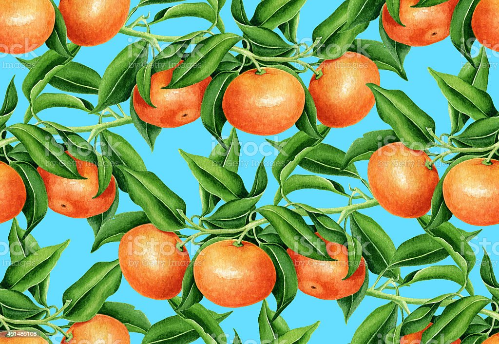Tangerine pattern vector art illustration