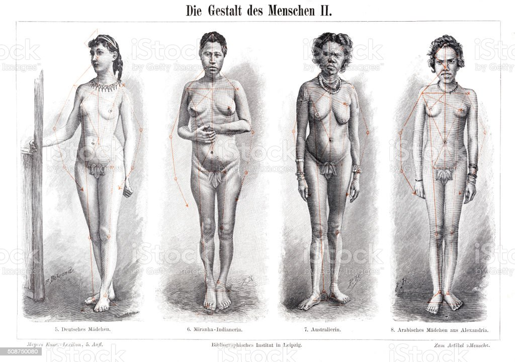 The anatomy form of women engraving 1897 stock photo