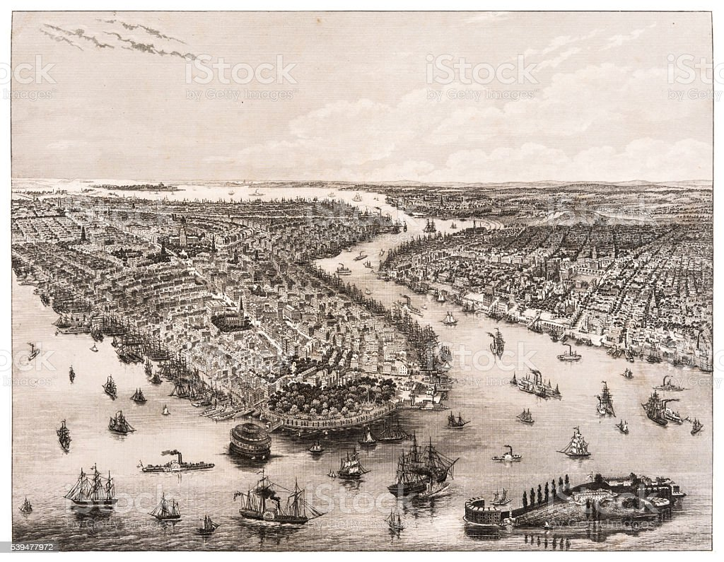 The Bay of New York and Brooklyn engraving 1853 vector art illustration