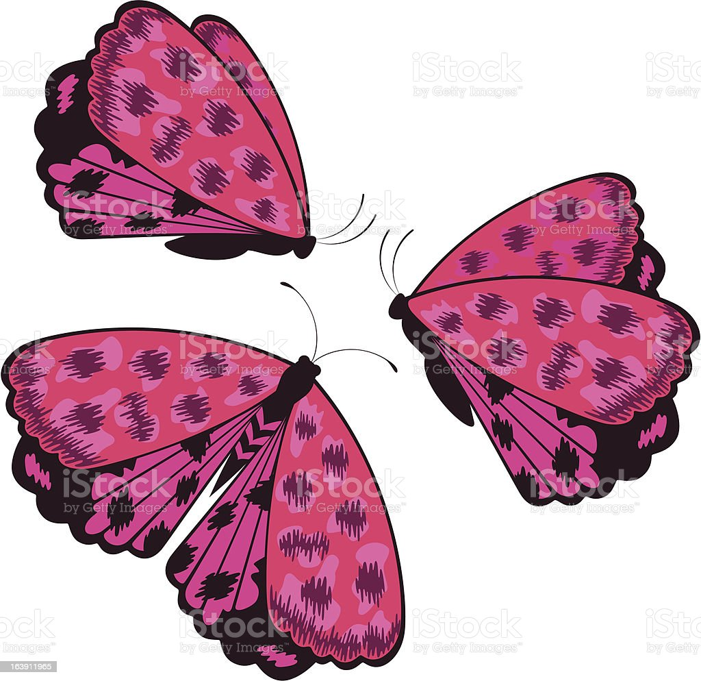 The beautiful butterfly. Vector royalty-free stock vector art