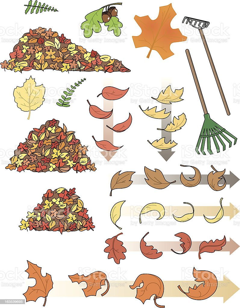 The fall collection vector art illustration