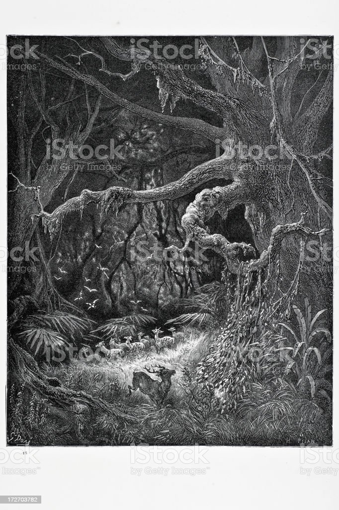 The Forest royalty-free stock vector art