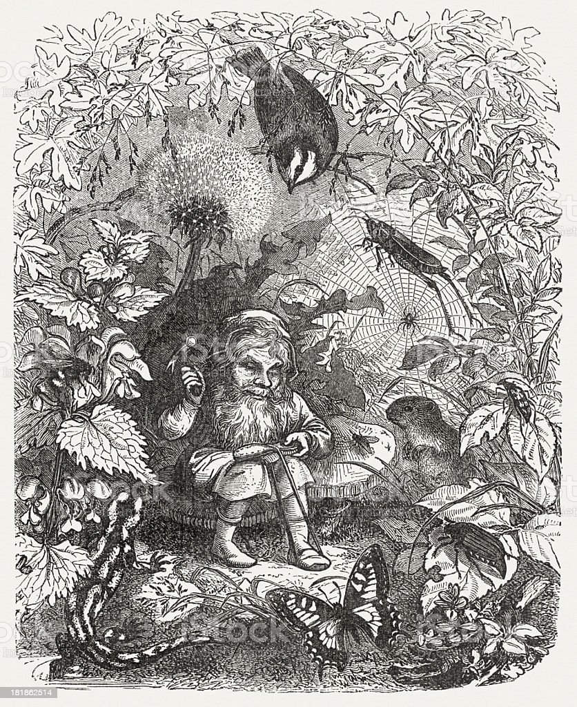 The Gnom, a fairy tale, wood engraving, published in 1873 vector art illustration