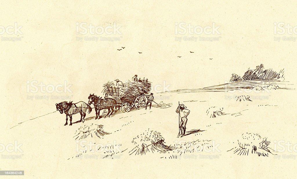 The Hay Meadow vector art illustration