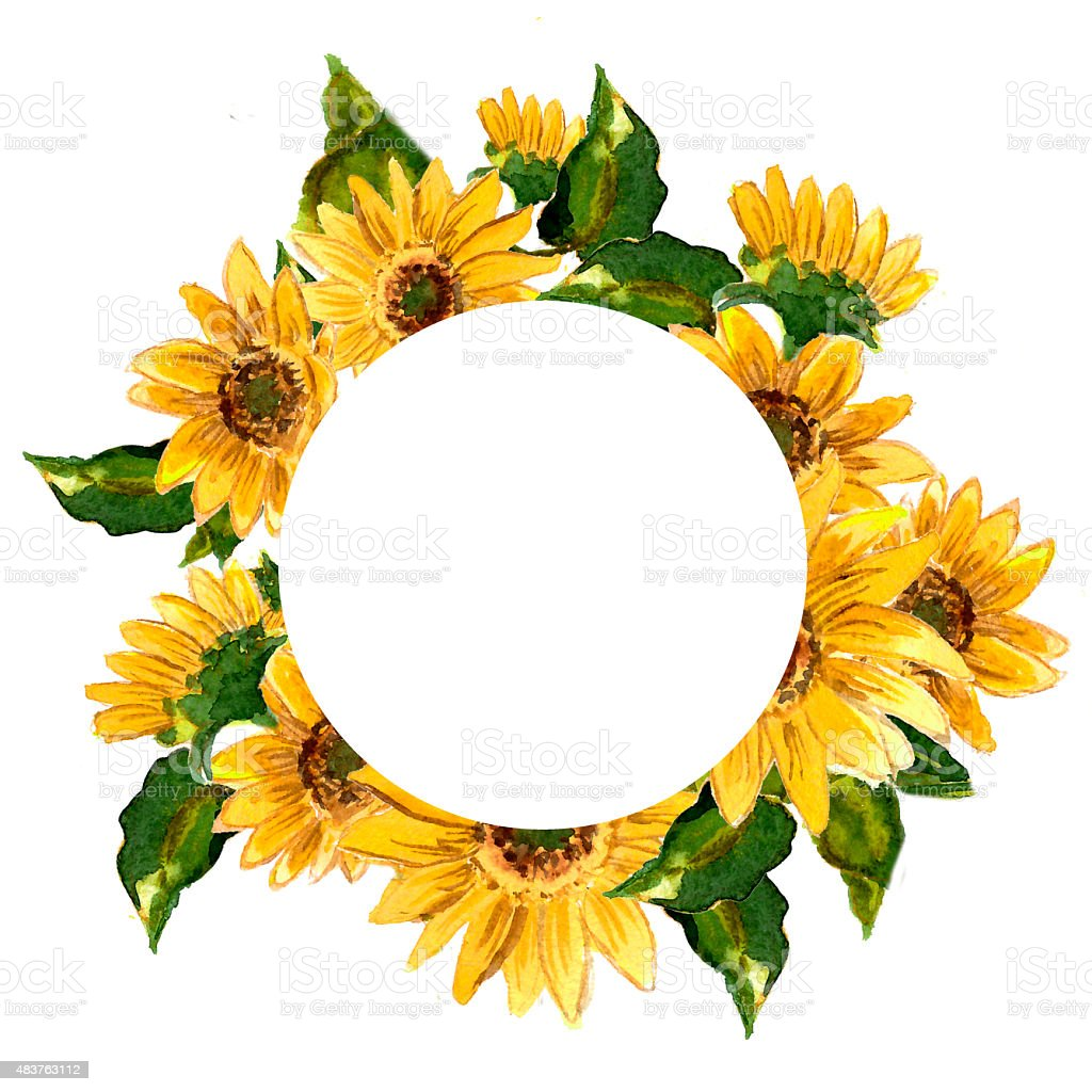 the pattern of blooming yellow flowers sunflower painted sunflower vector logo sunflower vector art
