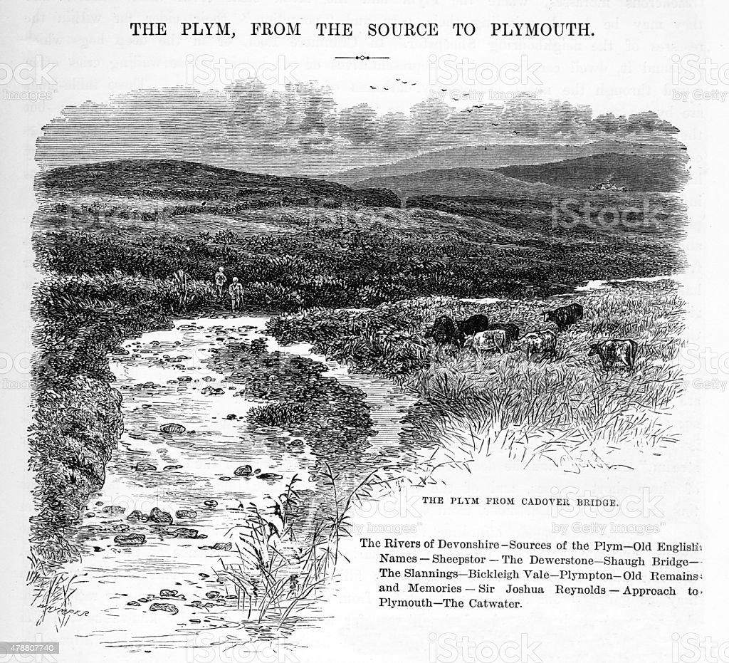 The Plym from Cadover Bridge Victorian Engraving vector art illustration