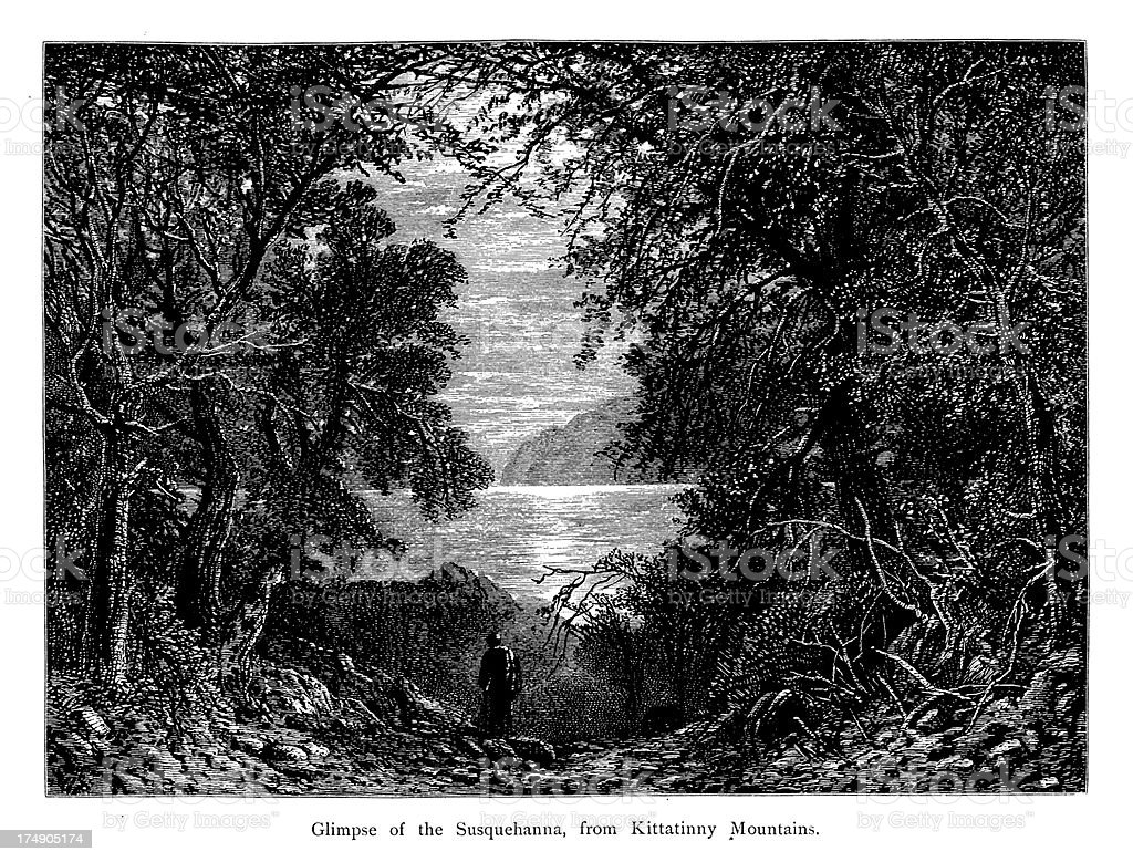 The Susquehanna River, USA, wood engraving (1872) royalty-free stock vector art