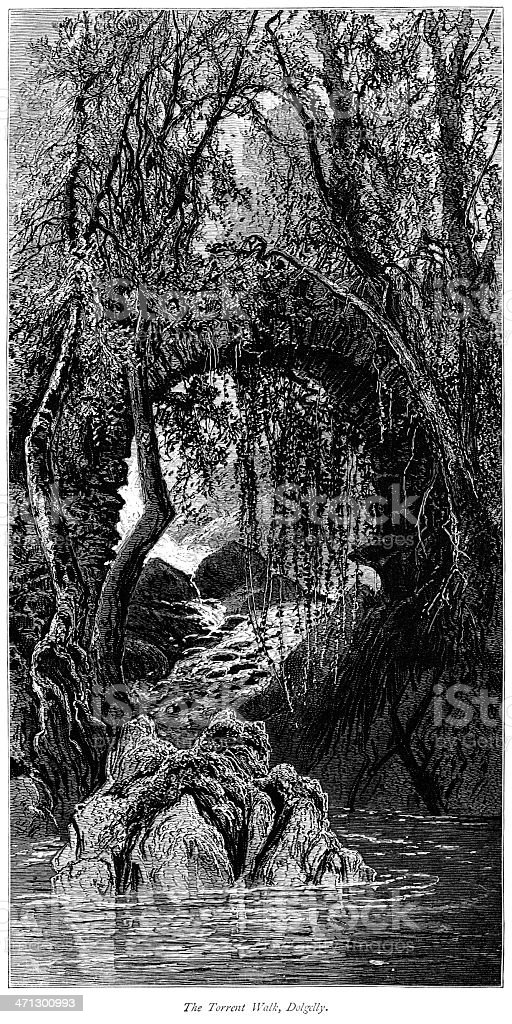 The Torrent Walk, Dolgelly, Wales royalty-free stock vector art