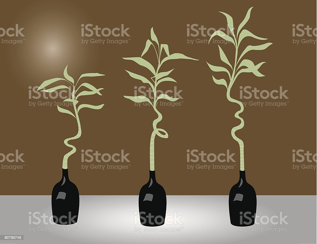 Three bamboos royalty-free stock vector art