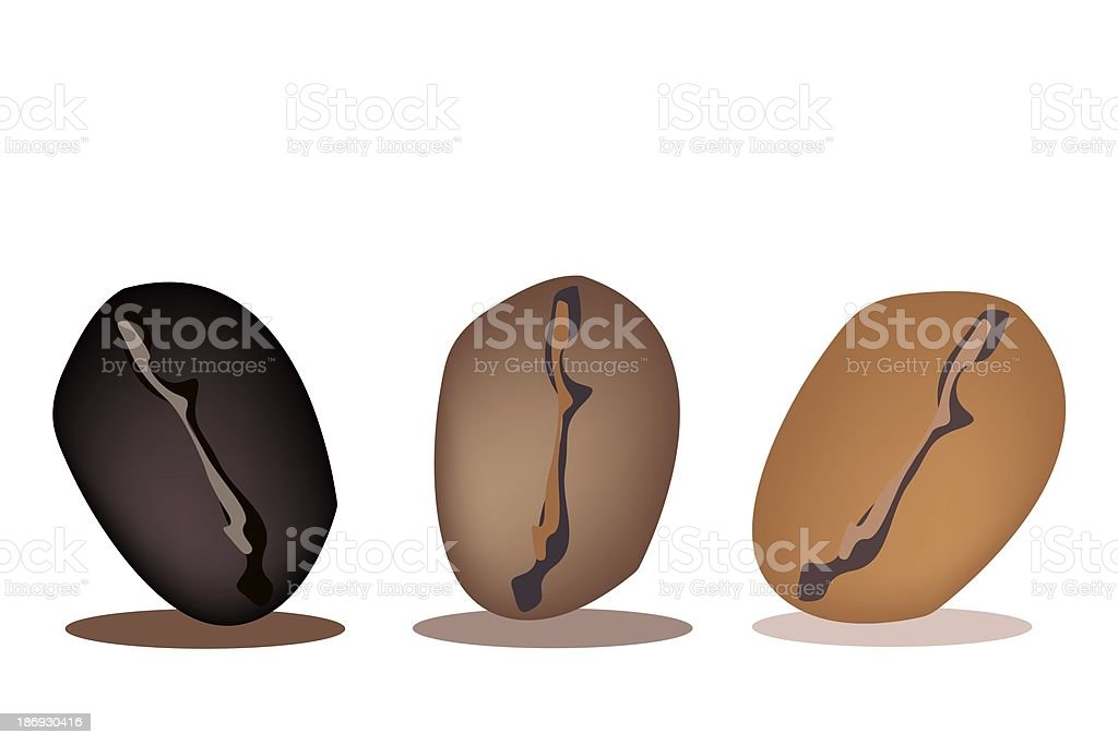 Three Colors of Coffee Beans in A Row vector art illustration