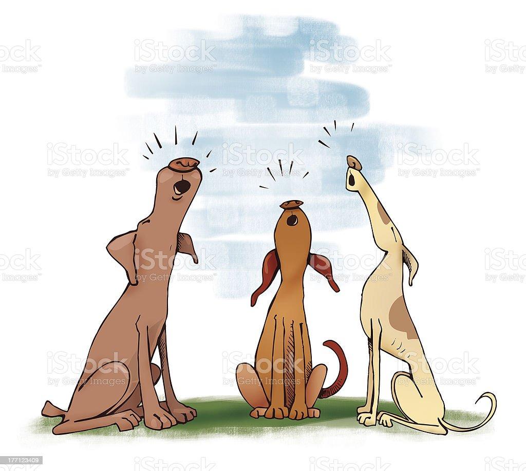 three howling dogs vector art illustration