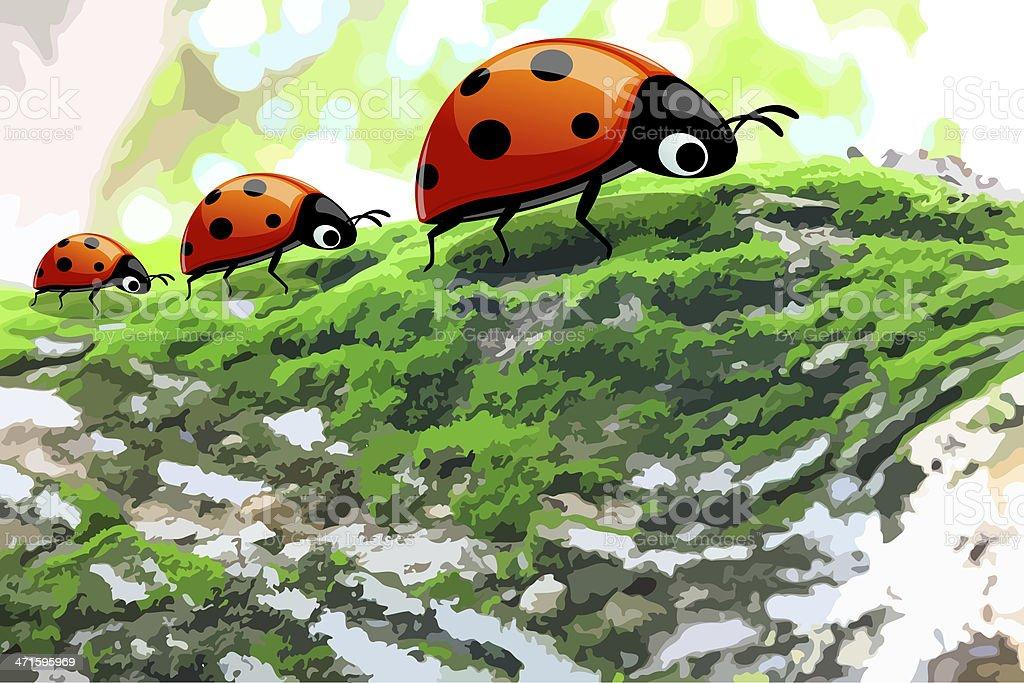 three ladybugs on tree royalty-free stock vector art