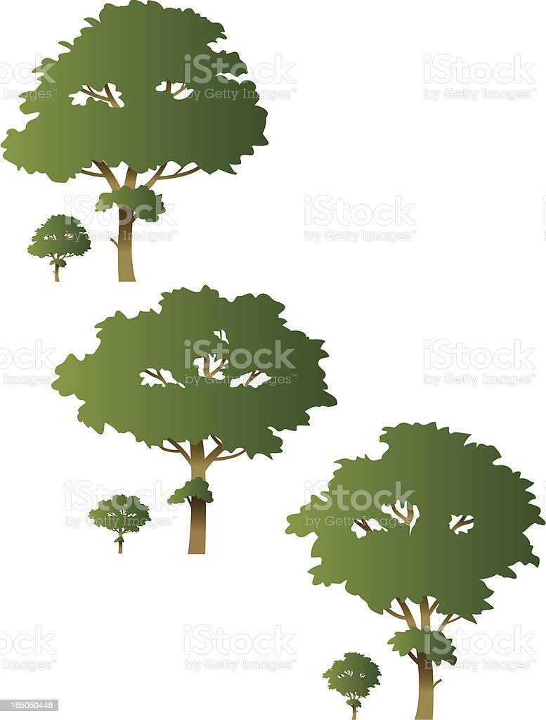 Three trees royalty-free stock vector art