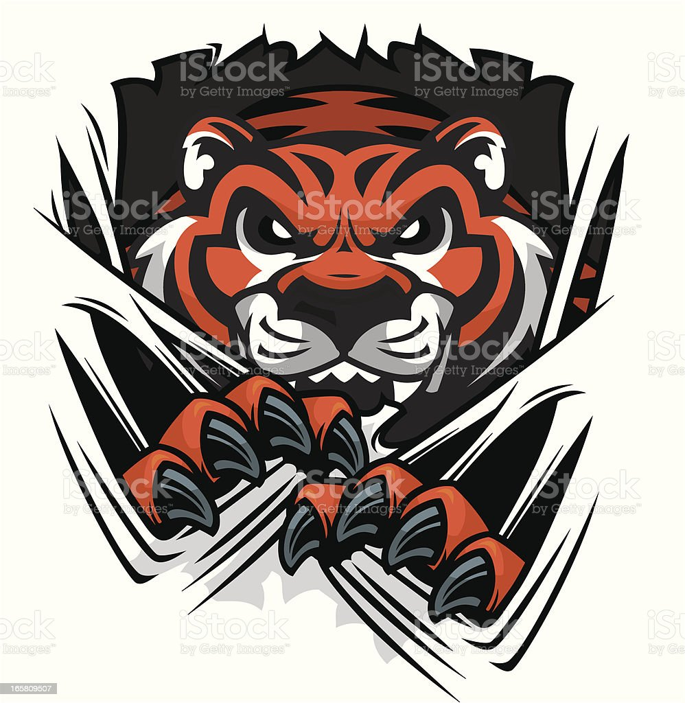 Tiger Tearing royalty-free stock vector art