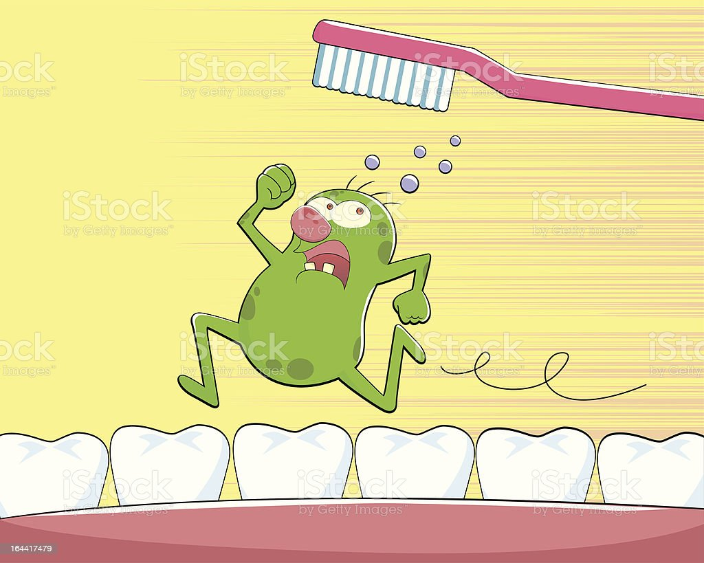 tooth germ royalty-free stock vector art