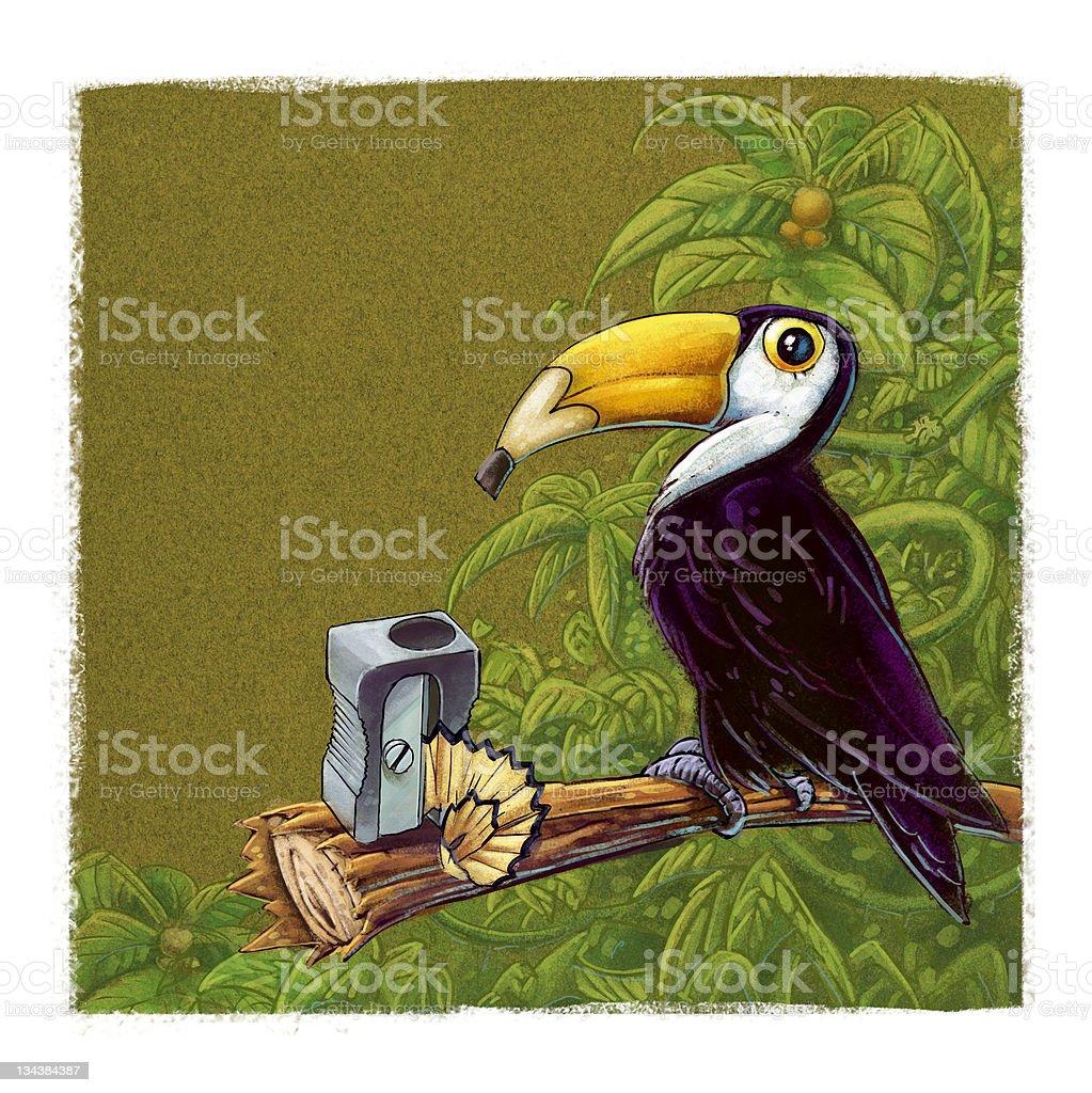 Toucan pencil vector art illustration