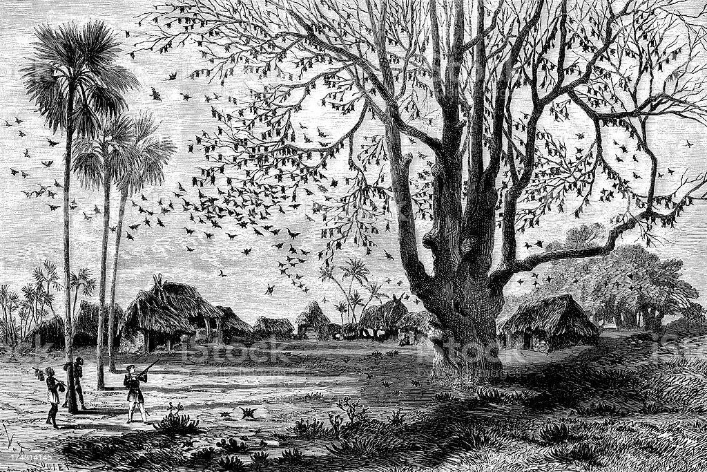 Tree full of bats! vector art illustration