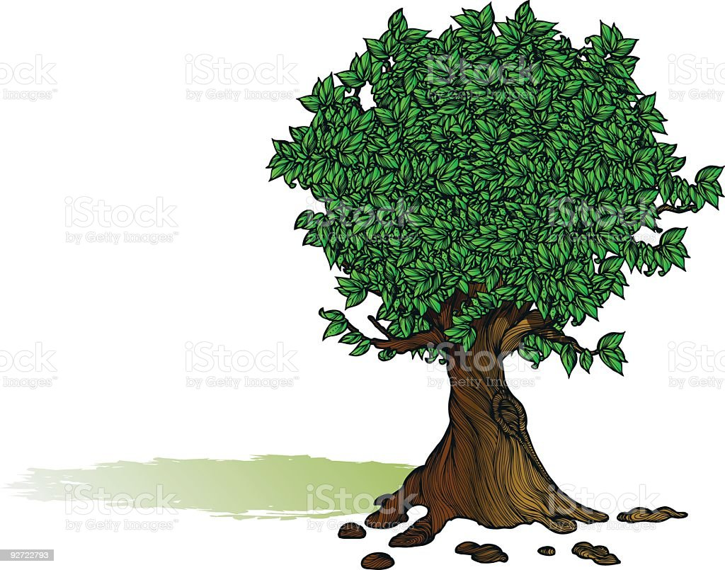 Tree Full of Leaves royalty-free stock vector art