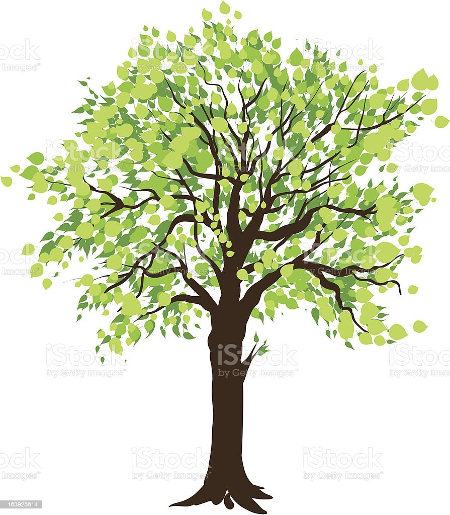 Tree royalty-free stock vector art