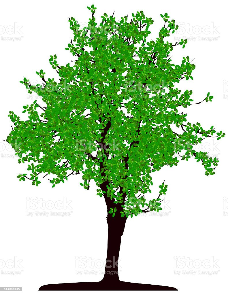 Tree (vector) vector art illustration