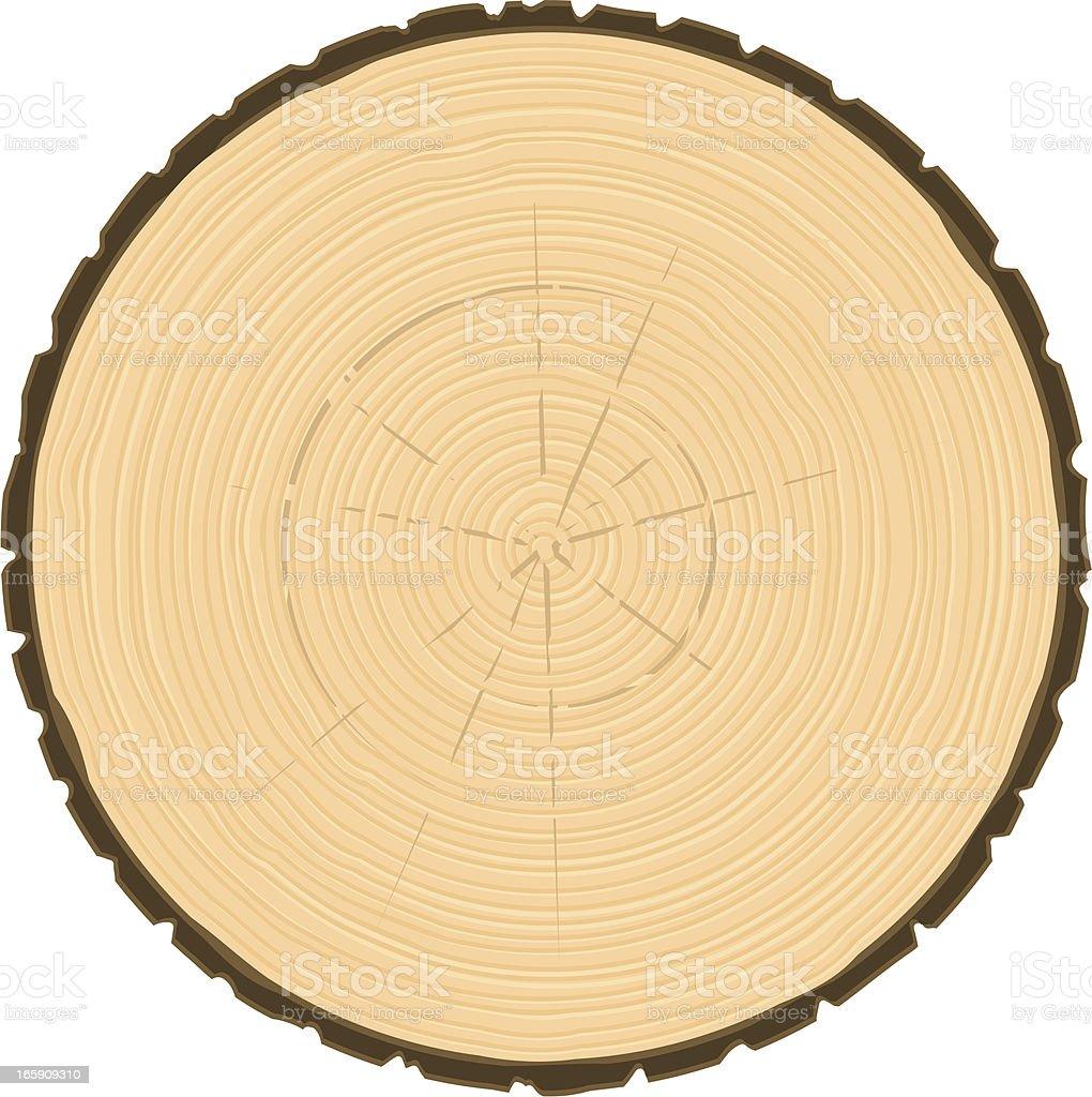 tree ring circle royalty-free stock vector art