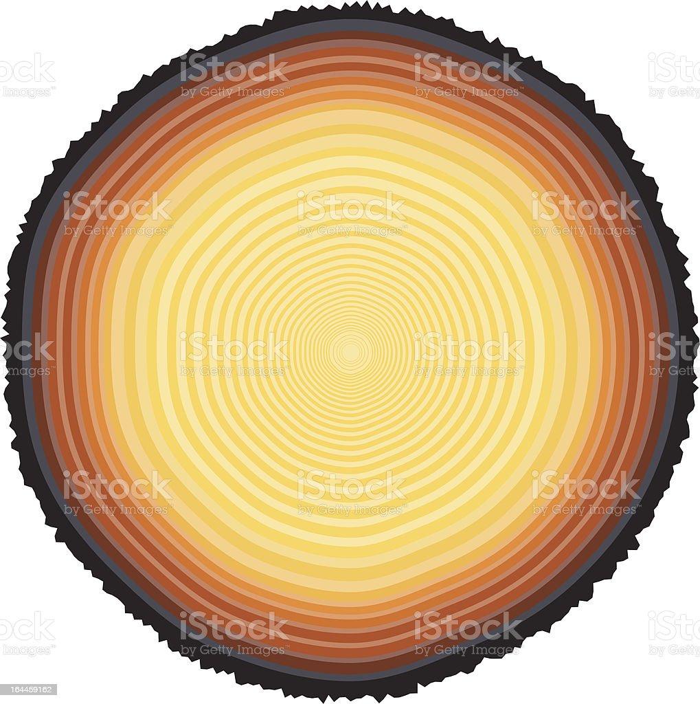 Tree rings royalty-free stock vector art