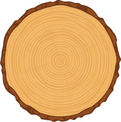 Tree Ring Clip Art, Vector Images & Illustrations - iStock